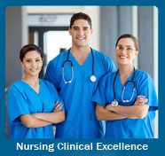 Clinical-Excellence-Course-Curriculum-for-Nurses