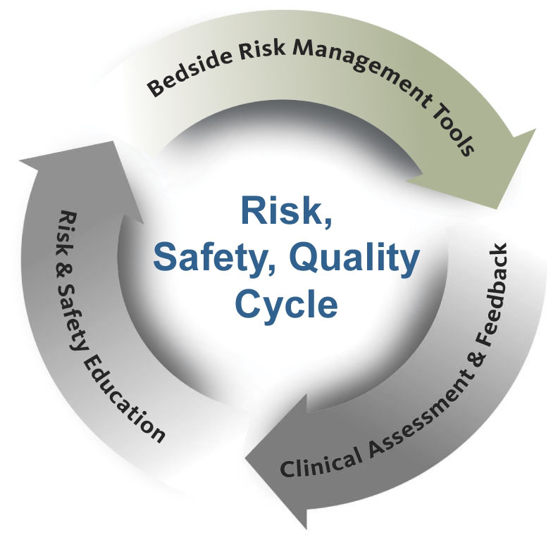 Patient Safety Risk Management Amp Performance Improvements